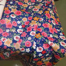 Digitaalse tekstiiltri trükkimine proov 1 digitaalse tekstiiliga printerile WER-EP7880T