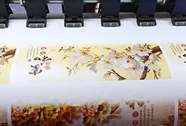 Self-Adhesive Vinyl printimine 1,8 m (6 jalga) ökoloogilise lahusti printer WER-ES1802